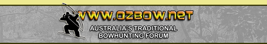 Ozbow Banner